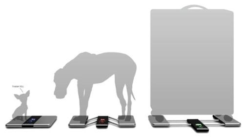 Оригинальные решения в дизайне весов