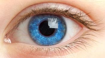 Правильная гигиена и эффективные упражнения для глаз