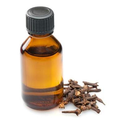 Как приготовить гвоздичное масло в домашних условиях
