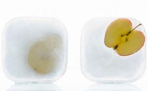 Приготовление ледяных кубиков в домашних условиях