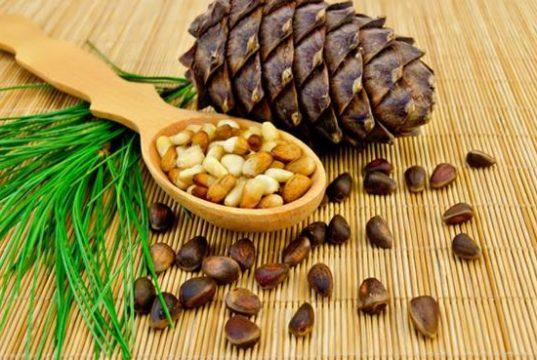 Кедровые орехи помогают сбросить вес